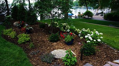 decorative-rocks-plants.jpg