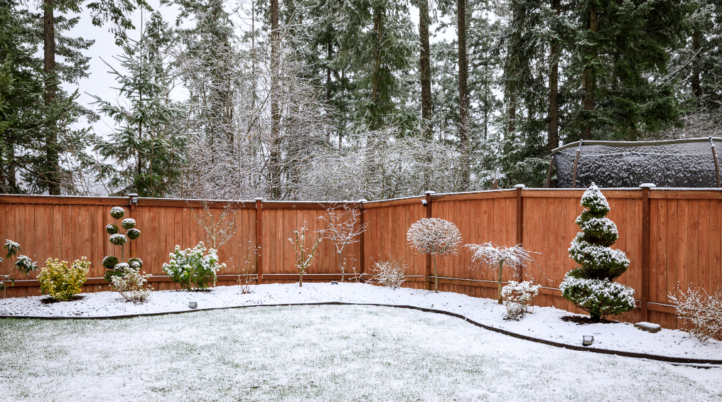Tips-and-Tricks-for-Frosty-Landscaping